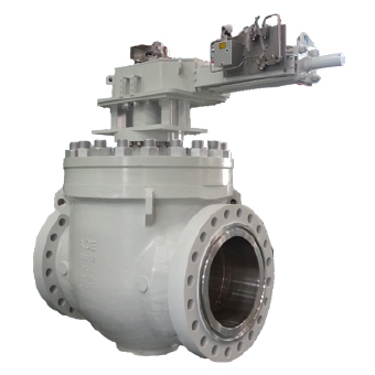 TOP ENTRY BALL VALVE All You Know About Different Types and Significant Uses of Gate Valve